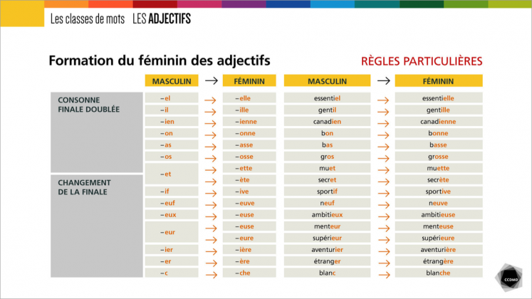 Document : Adjectifs – Tableau 2